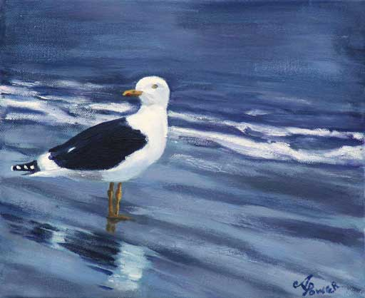 Andrea Power Dingle Artist's Gull on the Wild Atlantic Way